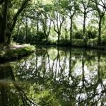 Canal du Midi #1