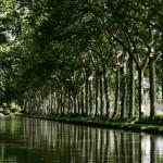 Canal du Midi #2