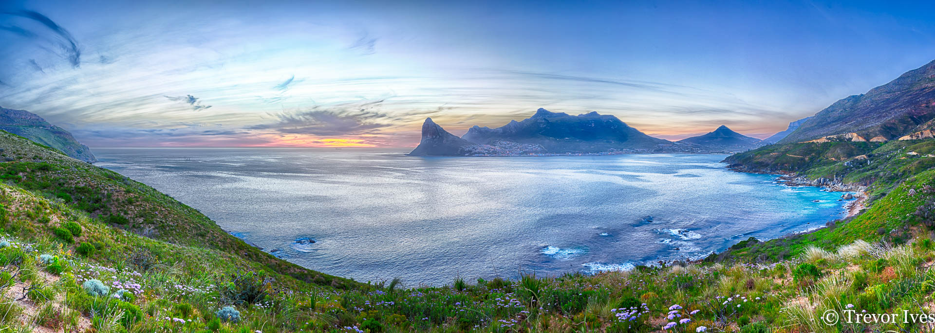 chappies-pano